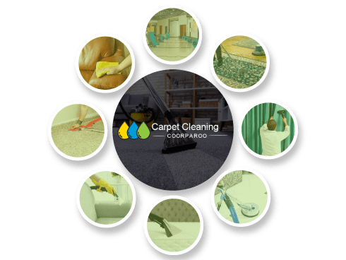 Carpte Cleaning Coorparoo