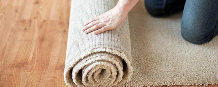 How Often Should You Replace Carpet