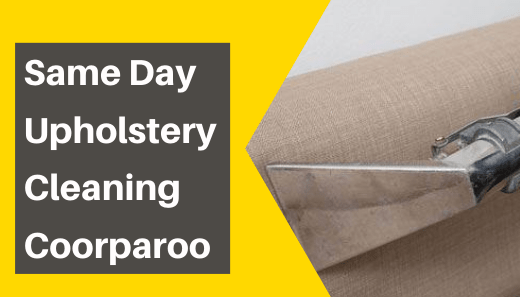 Same Day Upholstery Cleaning Coorparoo
